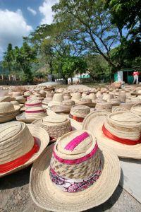 hats in cap haitien