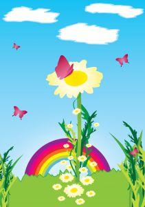 butterflies flower rainbow